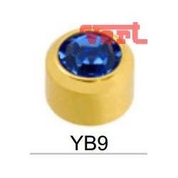 STR209 24CT GOLD PLATE REGULAR SEPTEMBER BEZELSET SY9